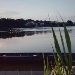 ferrycarrig rowing